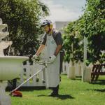 Empresa de prestação de serviços de jardinagem